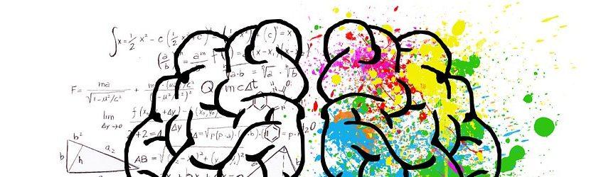 Illustrazione di un cervello