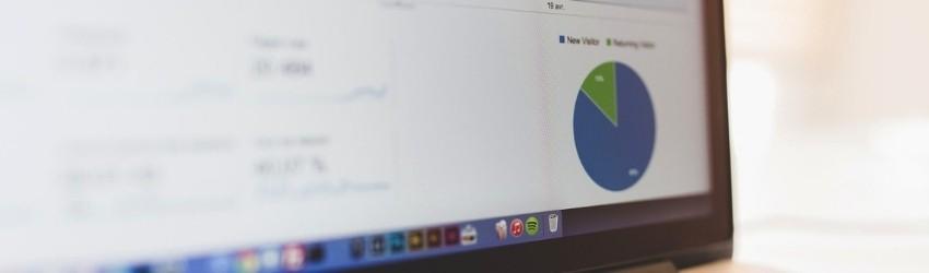 Schermo di un pc che mostra una statistica sui visitatori di un sito web