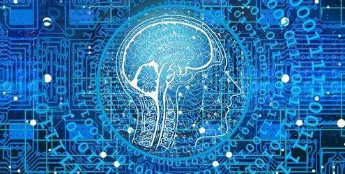 Competenze digitali: profilo di testa umana con il cervello che traspare in mezzo a un reticolo di collegamenti digitali